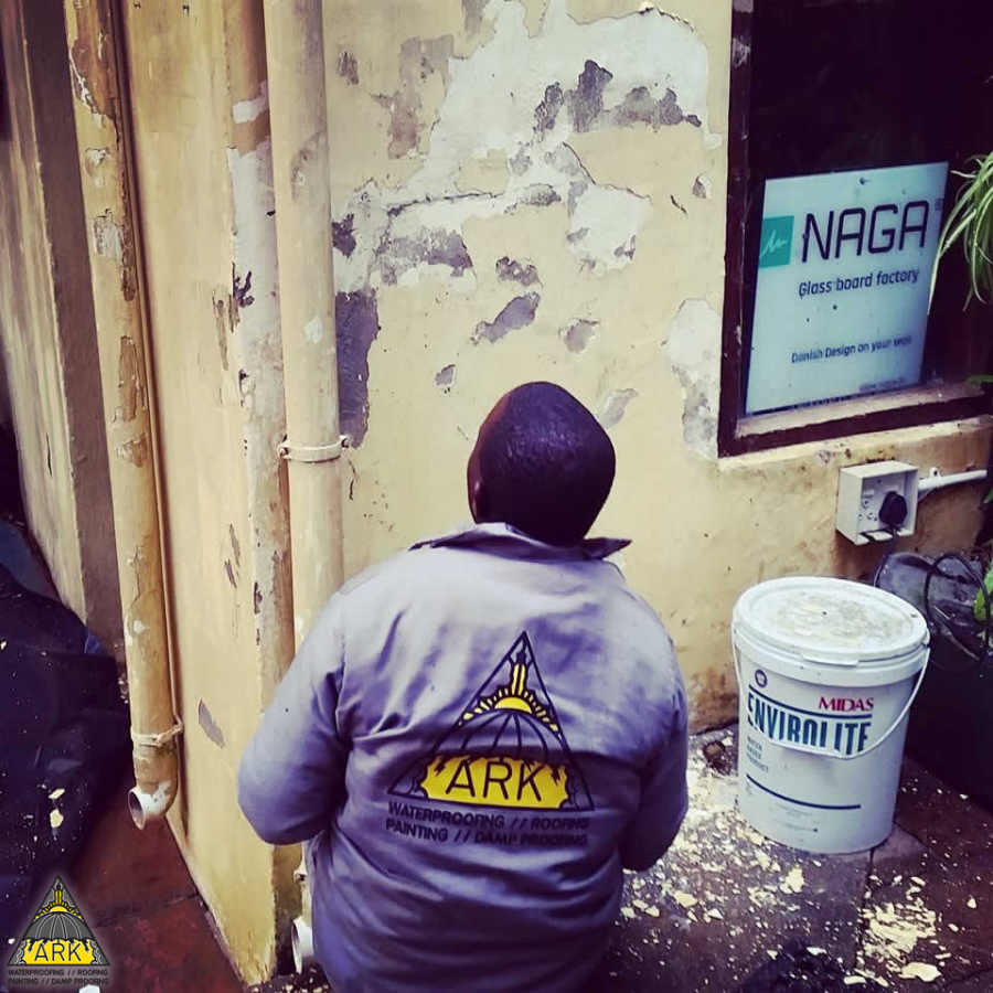 Painting and Restoration - Ark Waterproofing.png