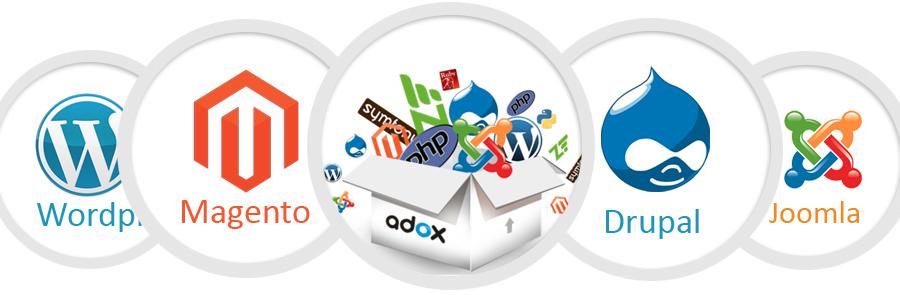 web-development-gauteng.png