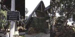 Greensleeves-Medieval-Kingdom-2.jpg
