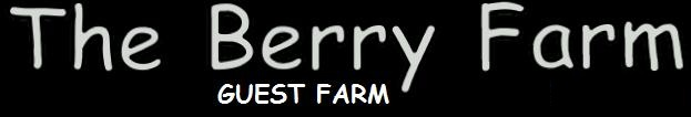 The-Berry-Guest-Farm