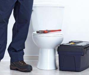 toilet-unblocking.png